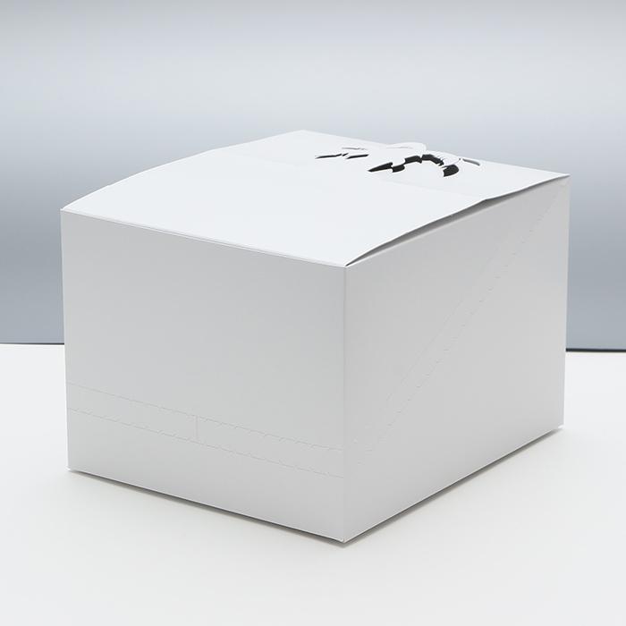 紙製品 発送用DP箱